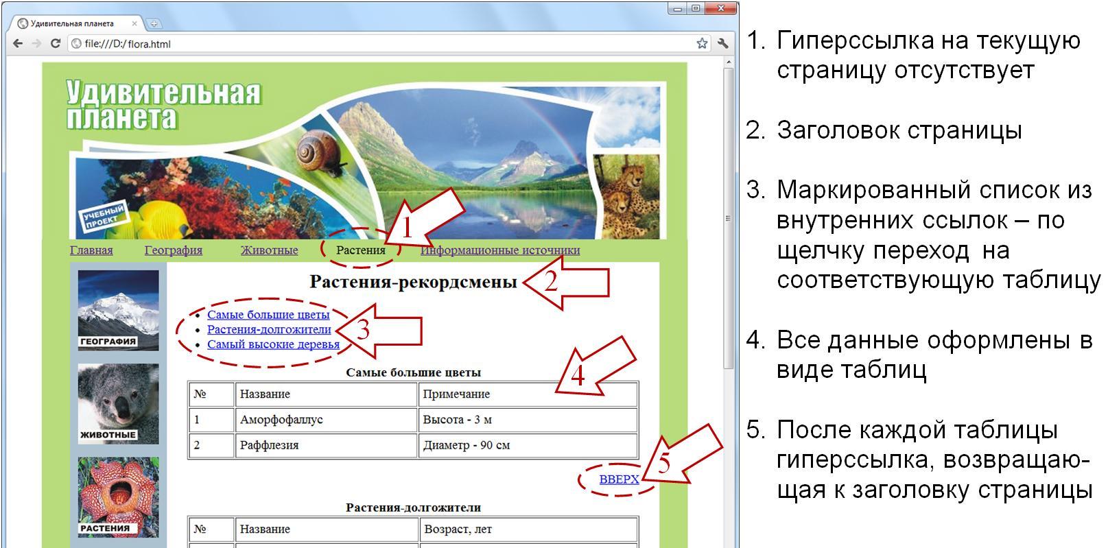 Как создать простую веб страницу с помощью HTML 57